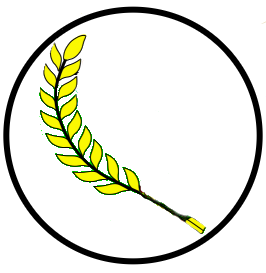 Gambar Logo Padi Dan Kapas
